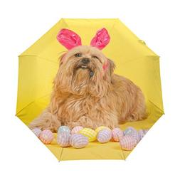 ColourLife Easter Dog Hare With Eggs Auto Open Close Foldabl